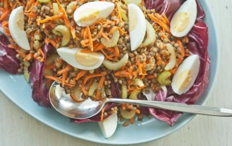Spelt Berry and Lentil Salad