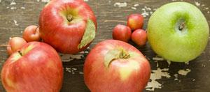apples_mixes
