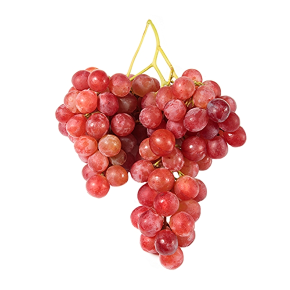 bunch of holiday red grapes