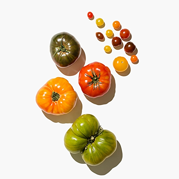 Image of tomatoes on white background
