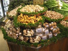 mushrooms10
