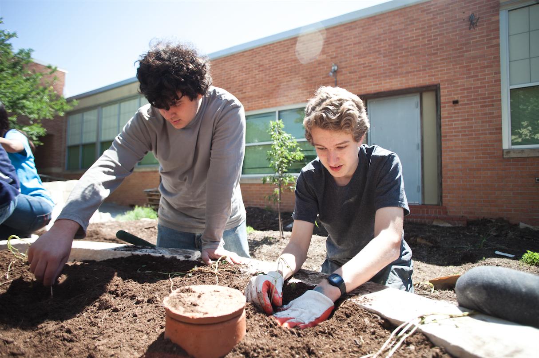 School Gardens | Whole Kids Foundation