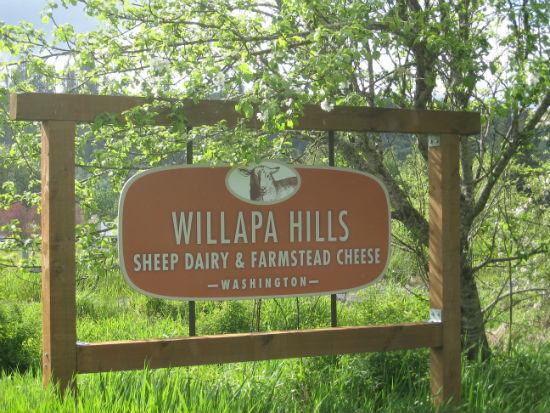 Willapa Hills