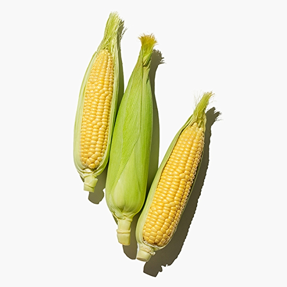 Image of corn on white background