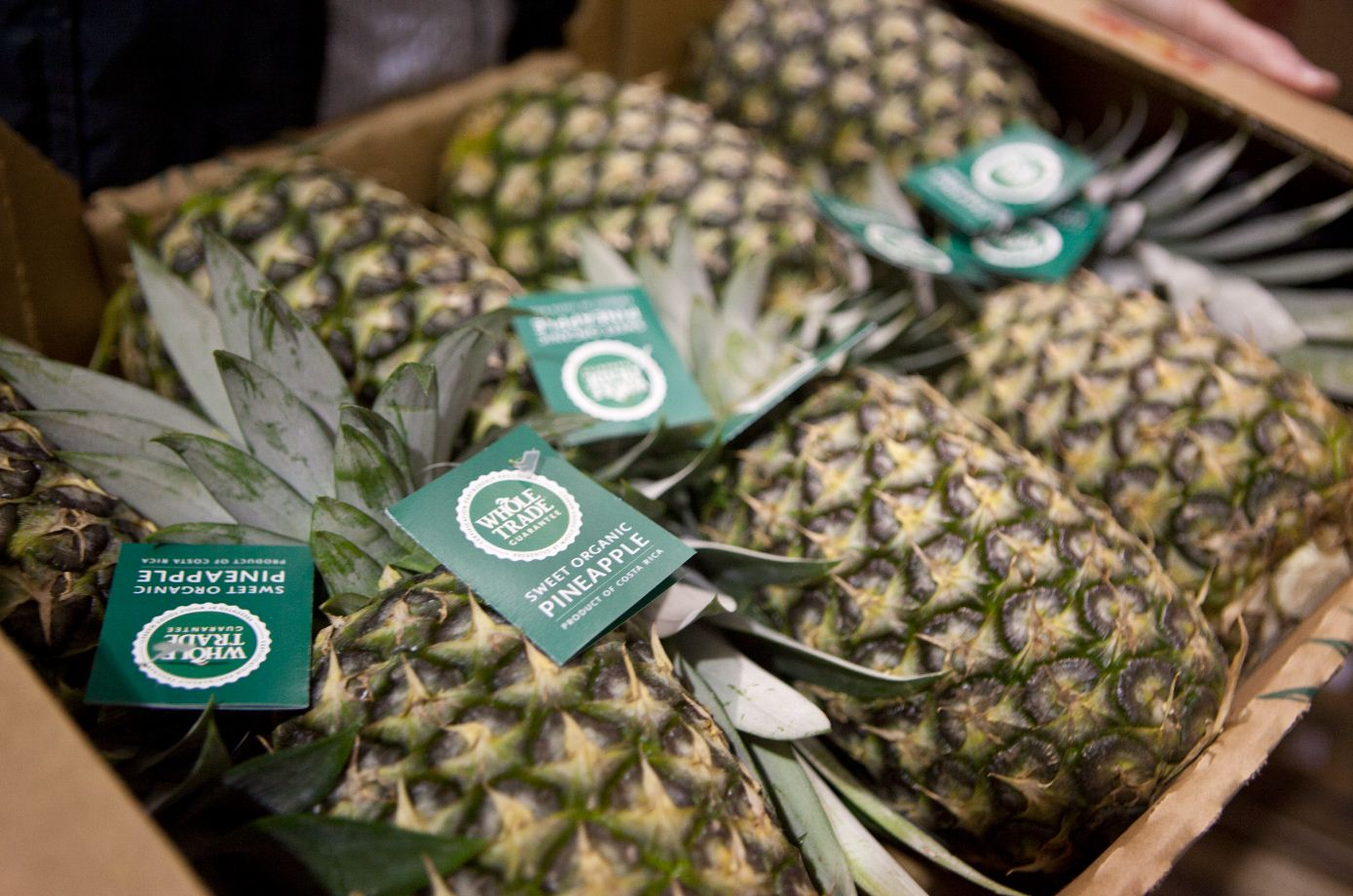 Whole Trade Guarantee Pineapples