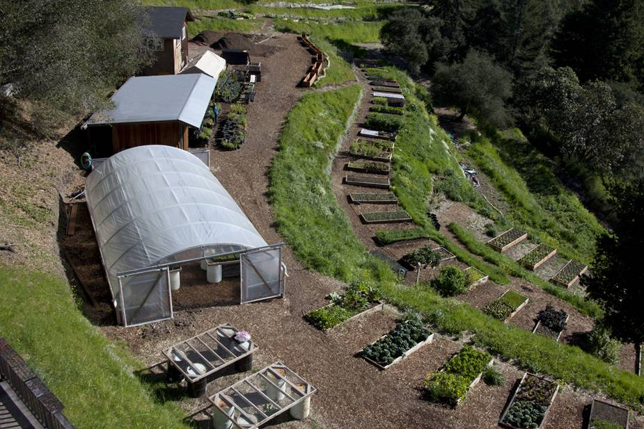 Love Apple Farm  Santa Cruz, CA