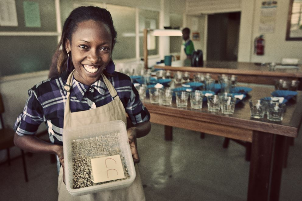 Quality Control -- TOMS Roasting Co. | Image by TOMS