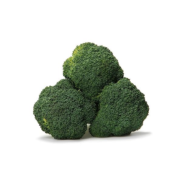 Organic Broccoli 3