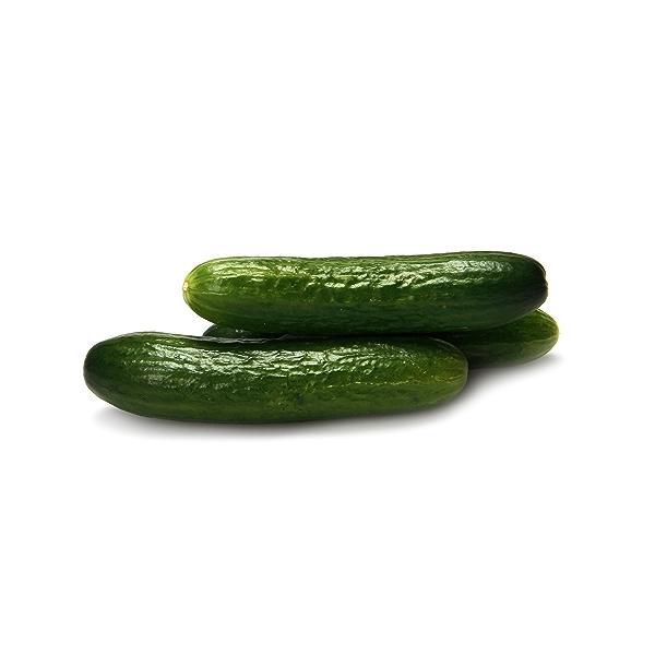 Mini Cucumber 1