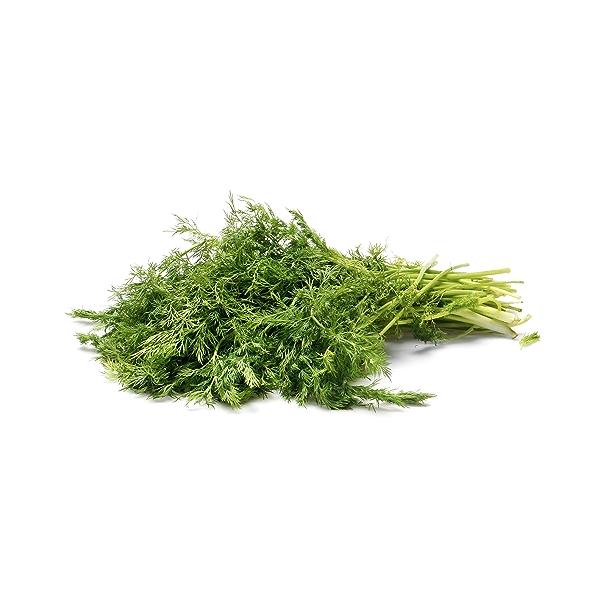 Organic Dill Bunch 1