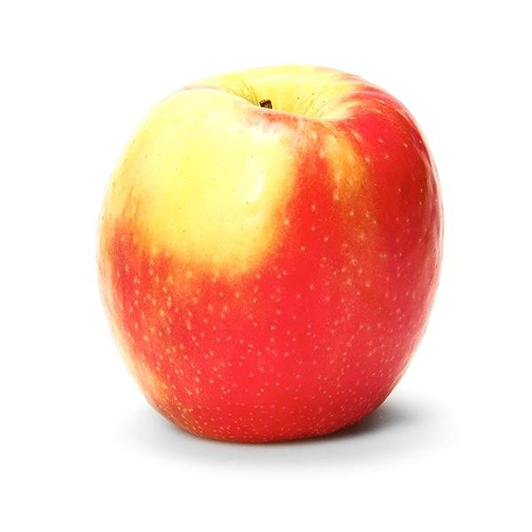 Organic Cripps Pink Apple 1