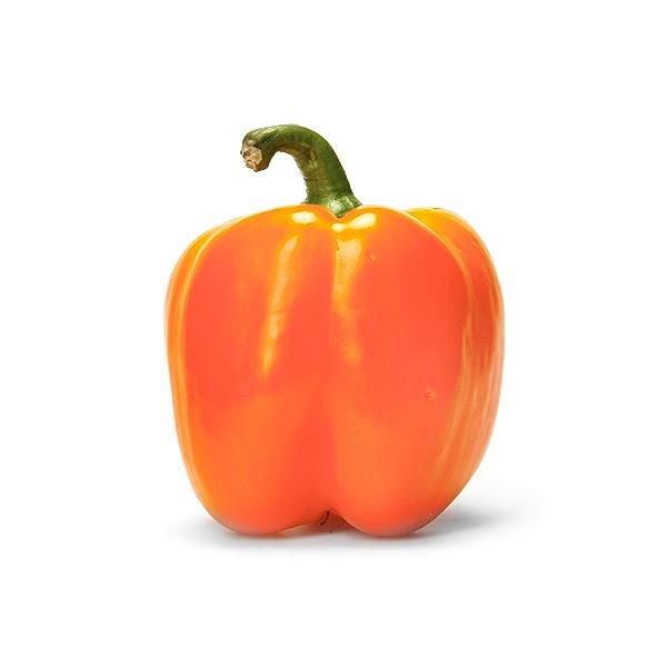 Organic Hothouse Orange Bell Pepper 1