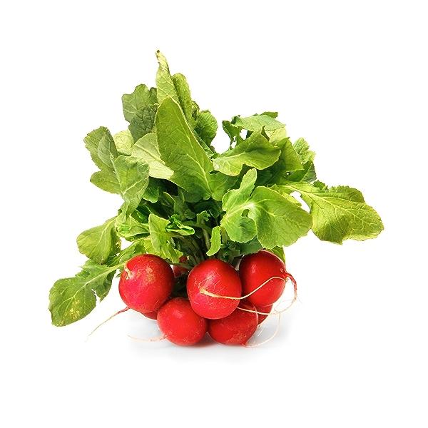 Organic Red Radish Bunch 1