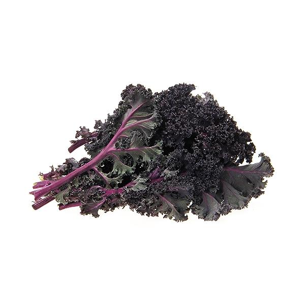 Organic Red Kale 1