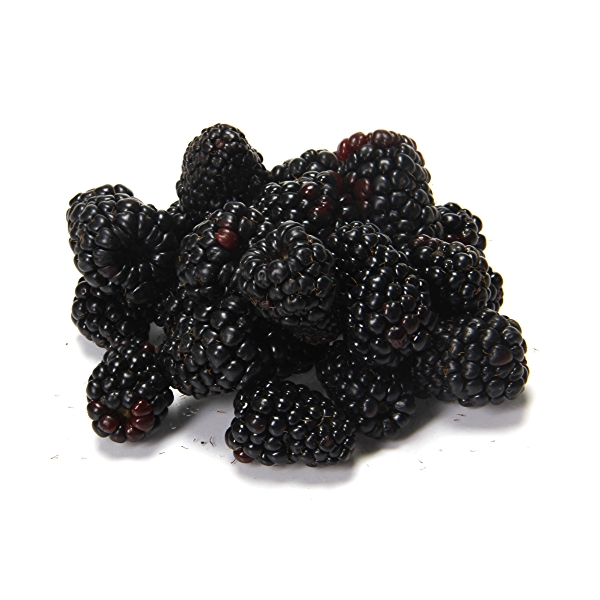 Blackberries Half Pint 2