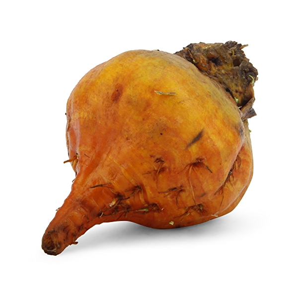 Organic Golden Beet Loose 1