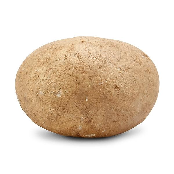 Organic Jicama Root 1