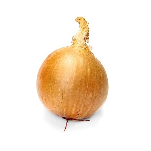 Organic Yellow Onion 1