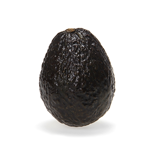 Organic Medium Hass Avocado 2