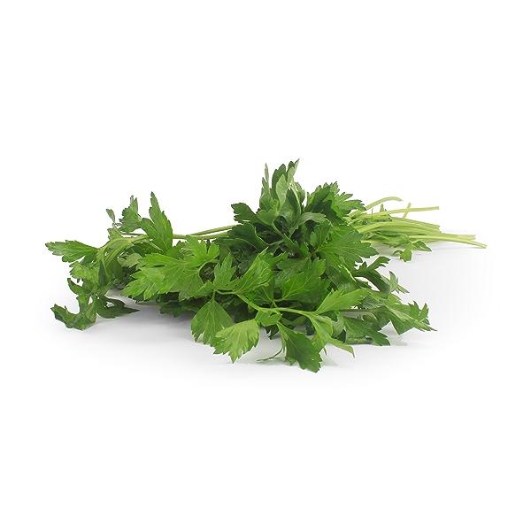 Organic Italian Parsley Bunch 1