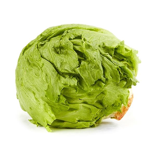 Organic Iceberg Lettuce 1