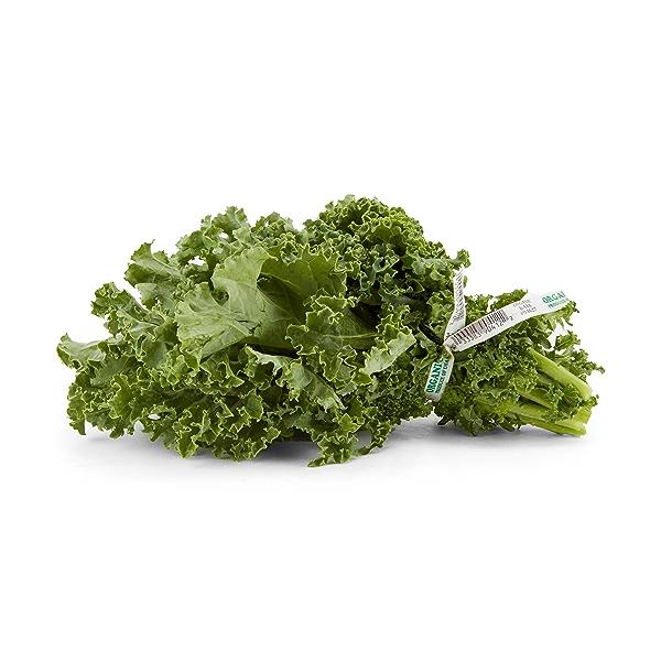Organic Green Kale 1