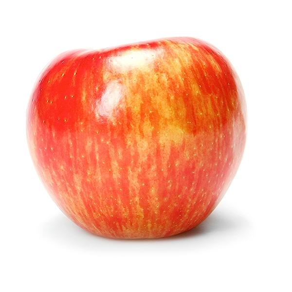 Honeycrisp Apple 1