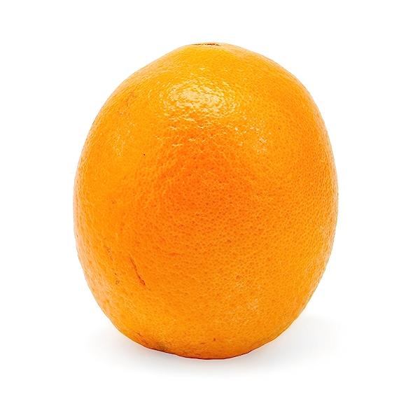Navel Orange 1