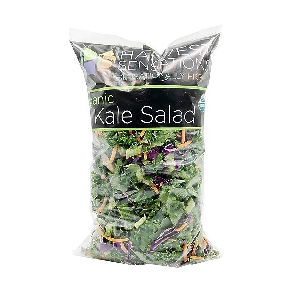 Organic Kale Salad 1
