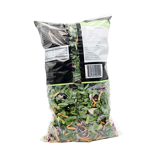 Organic Kale Salad 2