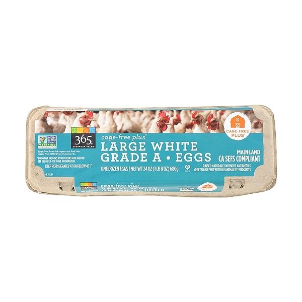 Cage-free Large White Grade A Eggs, 1 Dozen, 24 ounce 1