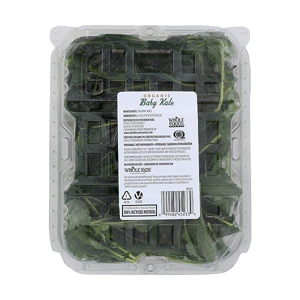 Organic Baby Kale 2