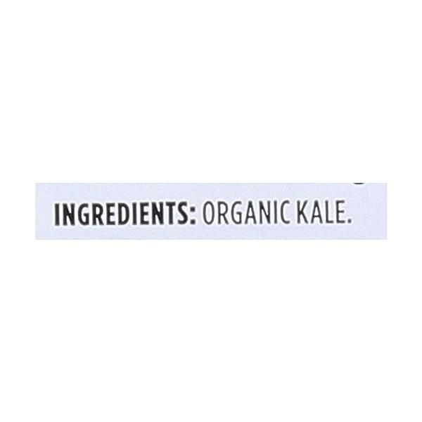 Organic Baby Kale 3