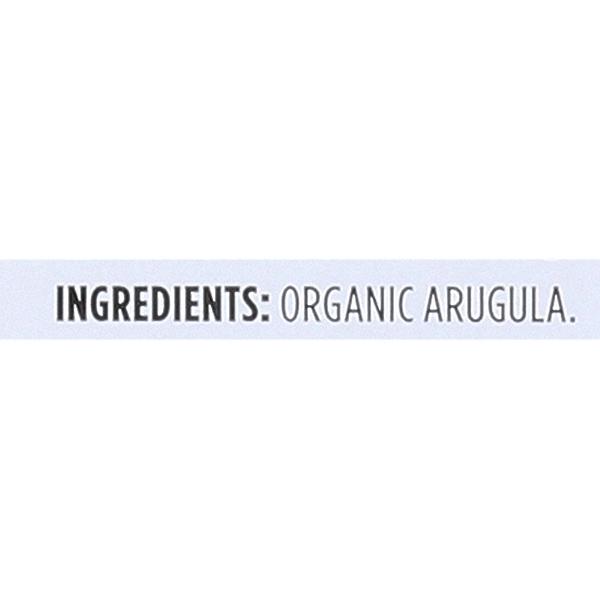 Organic Baby Arugula 3