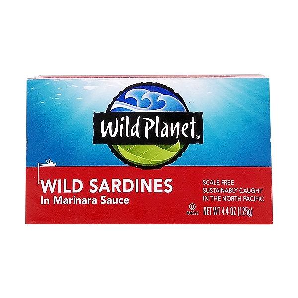Wild Sardines In Marinara Sauce 1