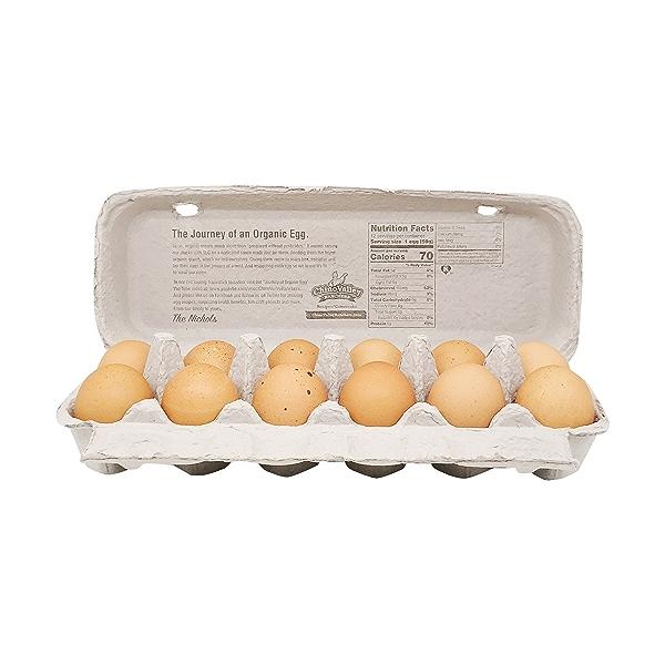 Organic Large Grade A Brown Eggs 2