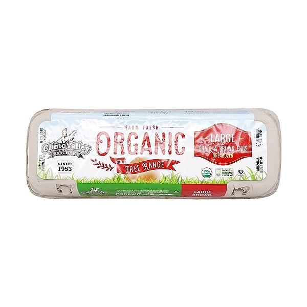 Organic Large Grade A Brown Eggs 1