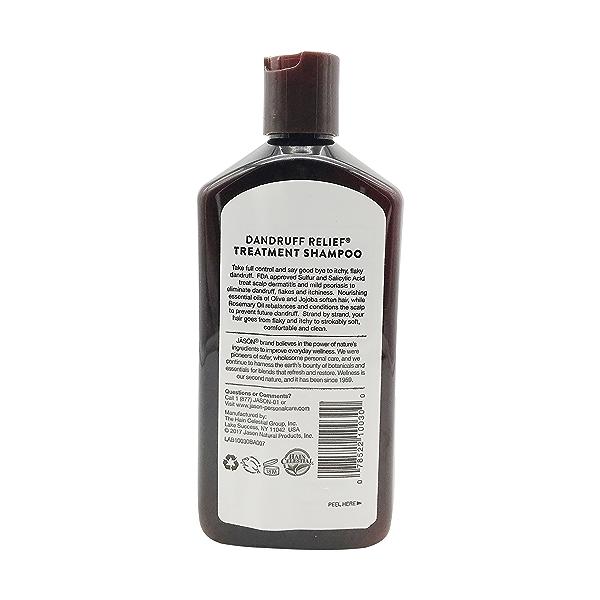 Dandruff Relief Shampoo, 12 fl oz 2