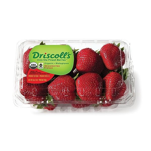 Organic Fair Trade Strawberries 1
