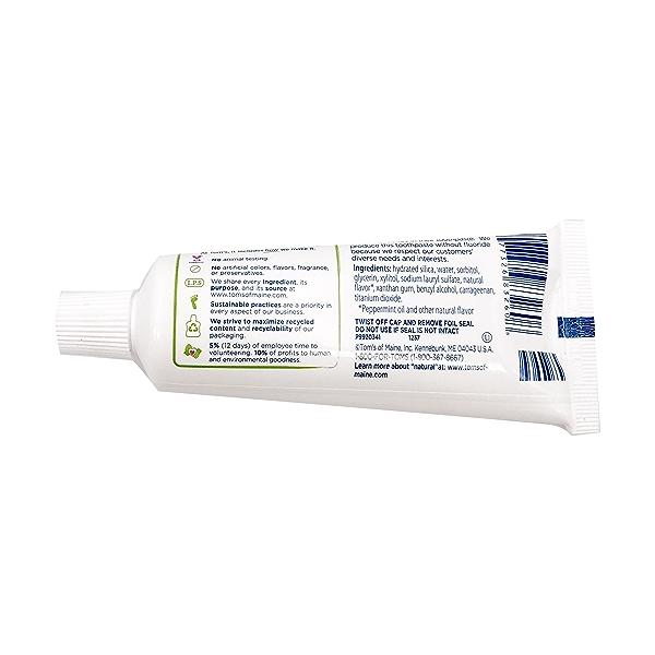 Floride Free Fresh Mint Toothpaste, 3 oz 2