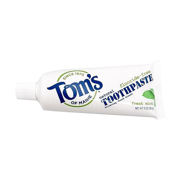 Floride Free Fresh Mint Toothpaste, 3 oz 1