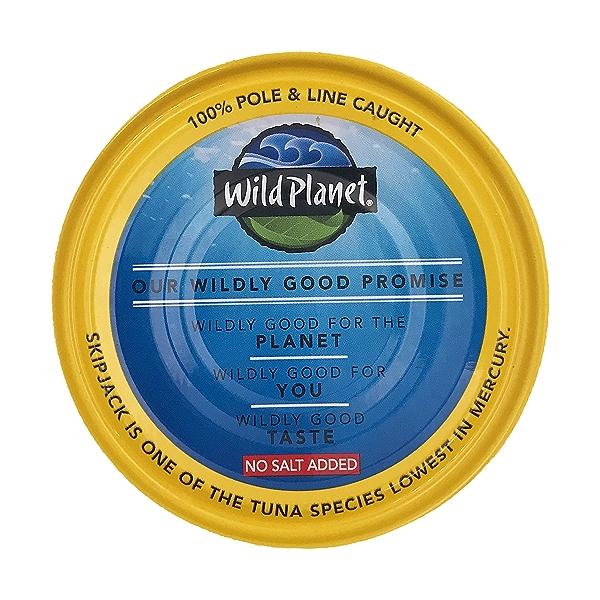Skipjack Wild Tuna 4
