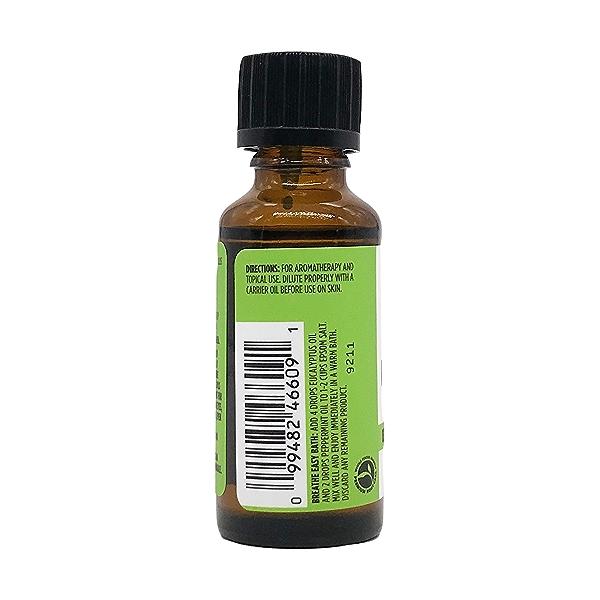 Eucalyptus Essential Oil, 1 each 3