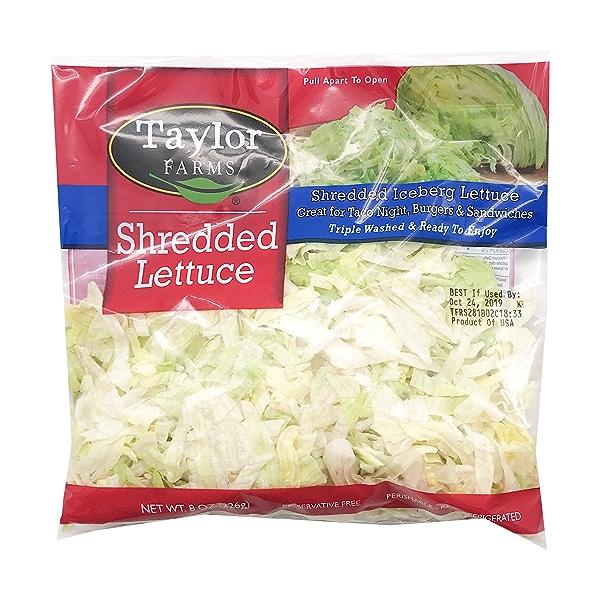 Shredded Iceberg Lettuce 1