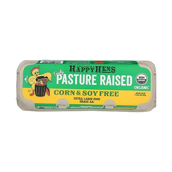 Pasture Raised Extra Large Eggs, 24 oz 1