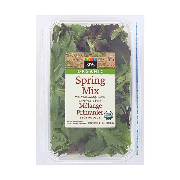 Organic Spring Salad Mix 1