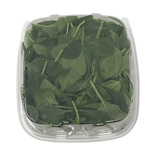 Baby Spinach 2