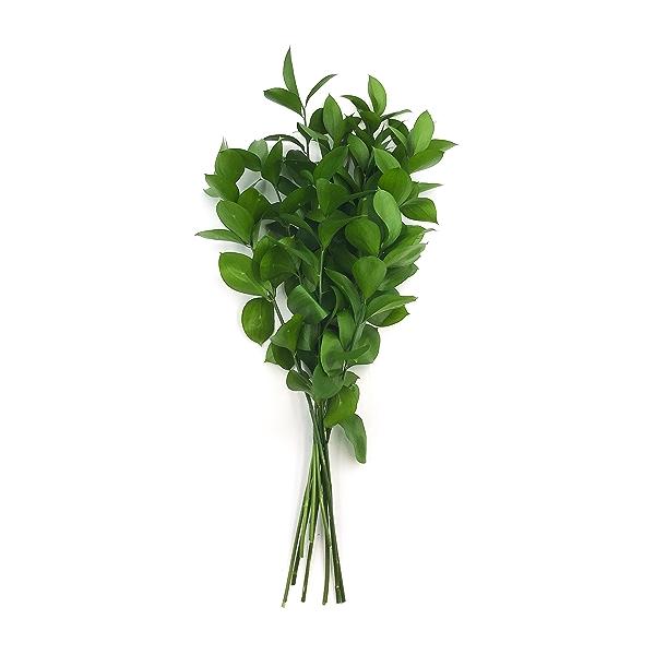 Sourced For Good Filler Flowers 1