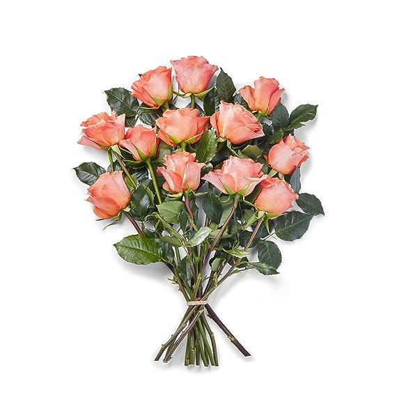 Sourced For Good Dozen Roses 40cm 1