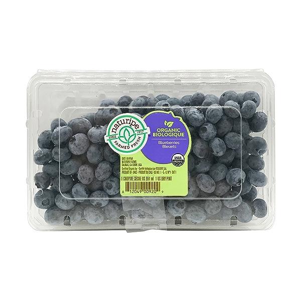 Organic Blueberries Pint 1